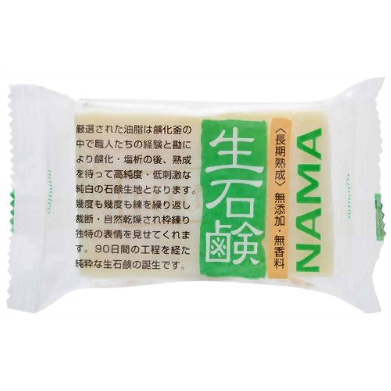 装置コート文言生石鹸NAMA 100g