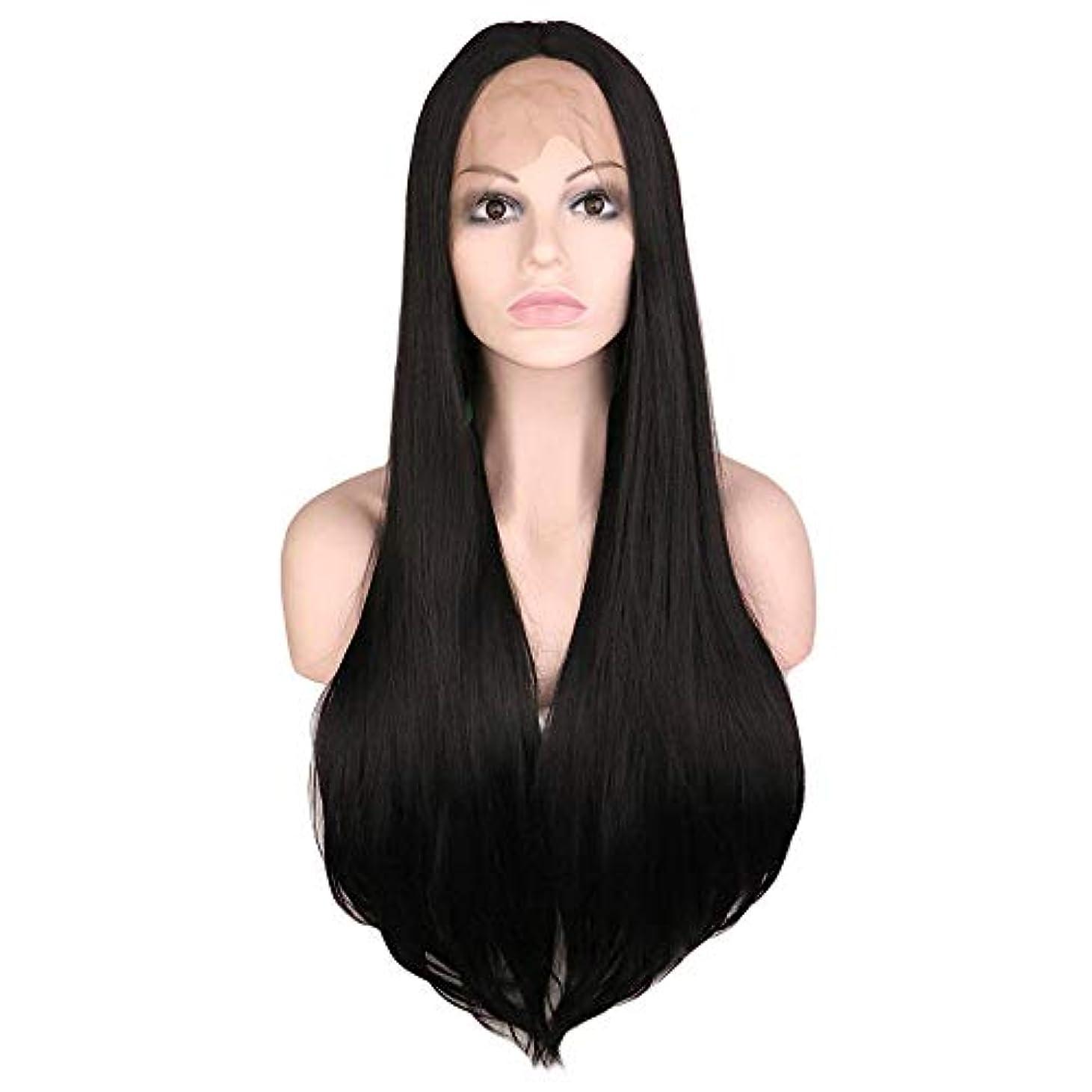 貴重なフィヨルド運賃ウィッグ つけ毛 28インチレースフロントウィッグロングストレートヘアウィッグミドルパートコスプレコスチュームデイリーパーティーウィッグ本物の髪を持つ女性 (色 : 黒, サイズ : 28