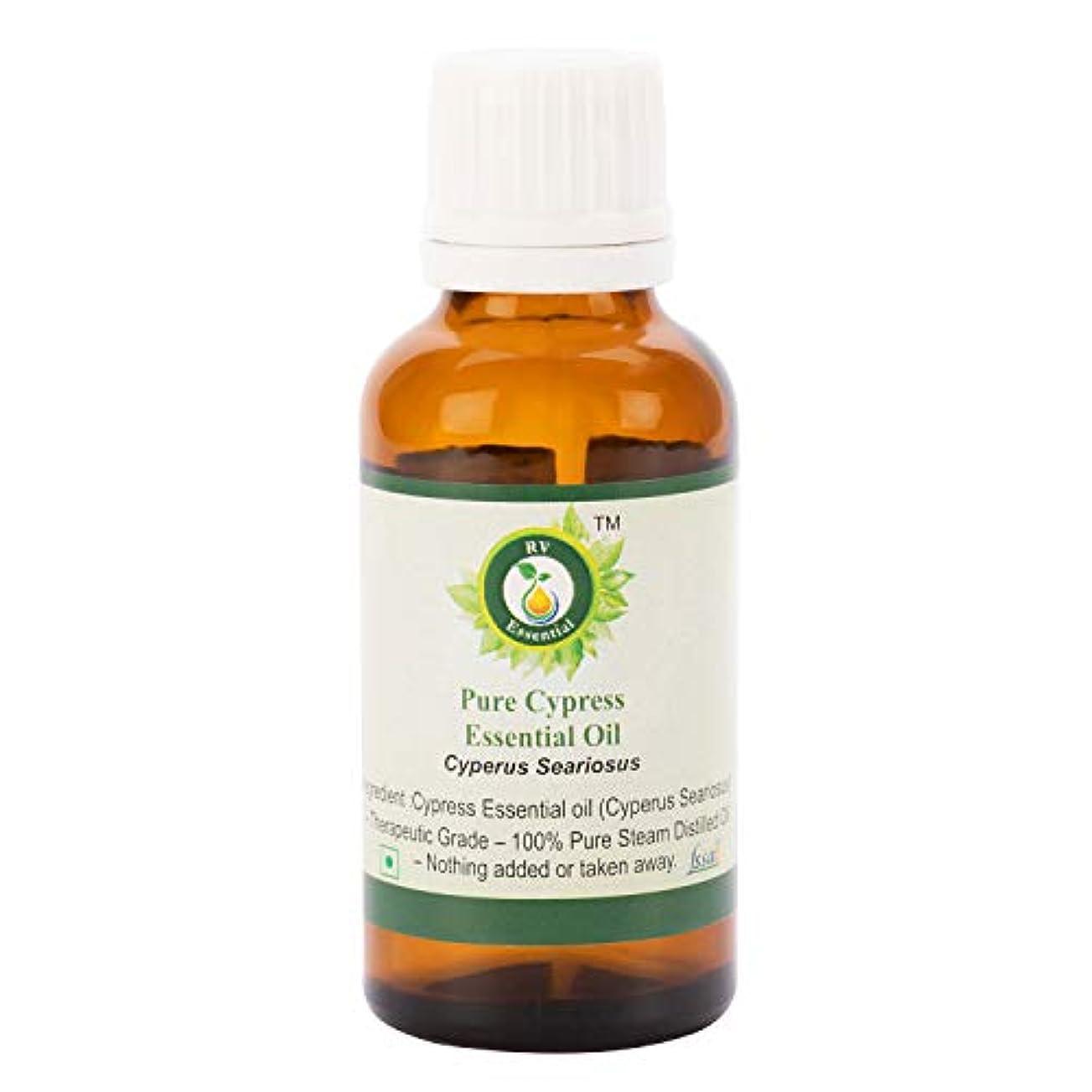 永続世界的にくつろぐピュアサイプレスエッセンシャルオイル100ml (3.38oz)- Cyperus Seariosus (100%純粋&天然スチームDistilled) Pure Cypress Essential Oil