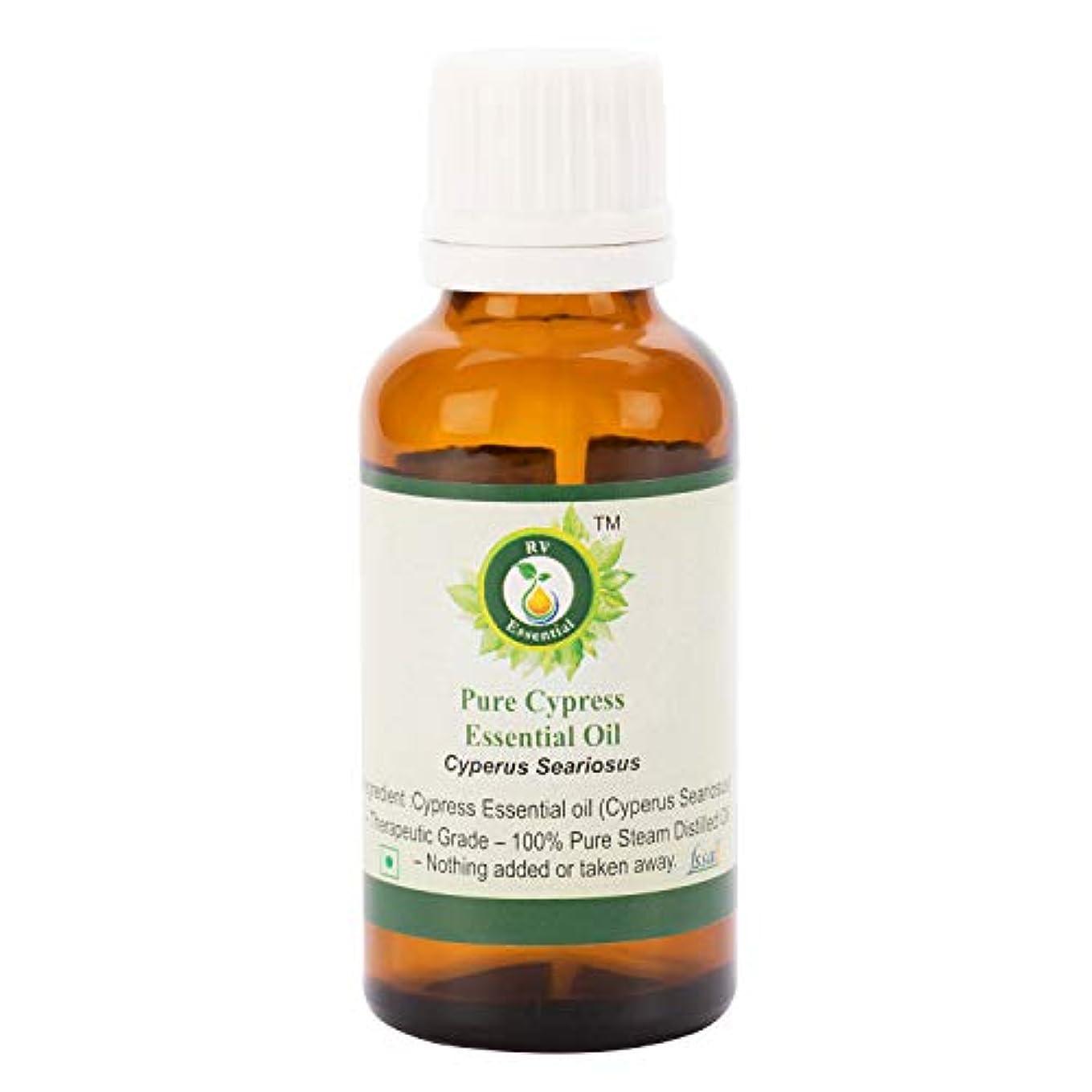 カメラ蜂彼女ピュアサイプレスエッセンシャルオイル100ml (3.38oz)- Cyperus Seariosus (100%純粋&天然スチームDistilled) Pure Cypress Essential Oil