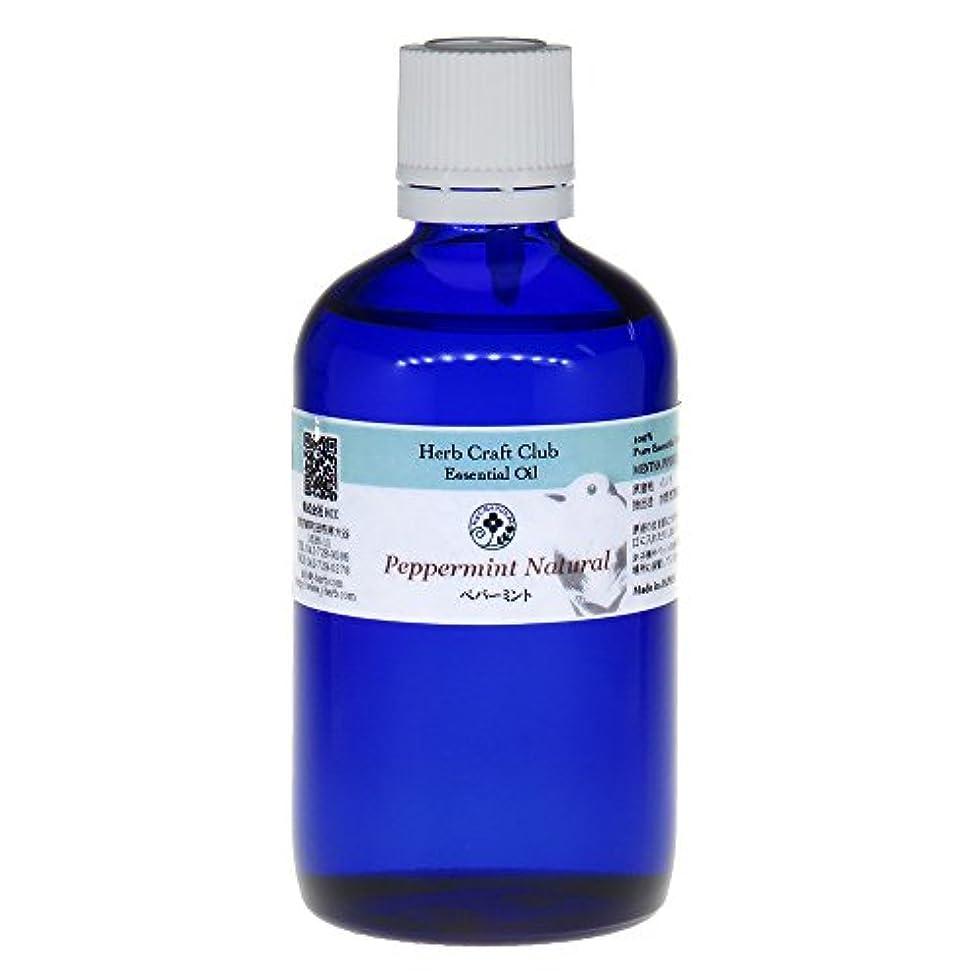 美容師努力する概してペパーミント105ml 米国産 100%天然エッセンシャルオイル ※徳用サイズ 卸価格