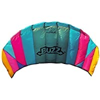 Flexifoil 1.45m Power Kite with 90 Day Money Back Guarantee! - Buzz Sport Foil By World Record Winning Designer of 2-line and 4-line Power Kites - Safe, Reliable and Durable Family Orientated Power Kiting, Kite Training and Introductory Traction Kiting by Flexifoil [並行輸入品]