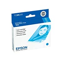 epst034220–EPSON t034220インク