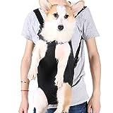 Petshy 犬 猫 ペットキャリー バッグ 抱っこバッグ 軽量 通気性 メッシュ 安全 お出かけ アウトドア 旅行 両手解放 小型犬 ペットおんぶ紐 お散歩バッグ (M,ブラック) …