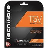 テクニファイバー(Tecnifibre) 硬式テニス ストリング TGV ゲージ1.25mm TFG906 ピンク(PK)