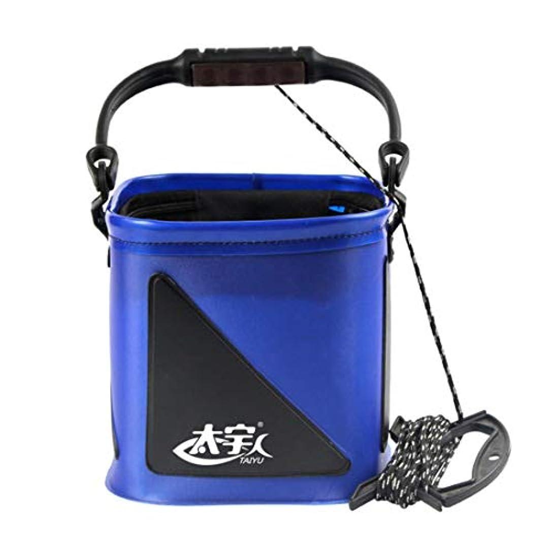 火山学者ばかげている緊張沈阳市沈河区兰芯化妆品店 屋外EVA素材ブルー色ポータブルで丈夫な多機能フックボックス (色 : ブルー)