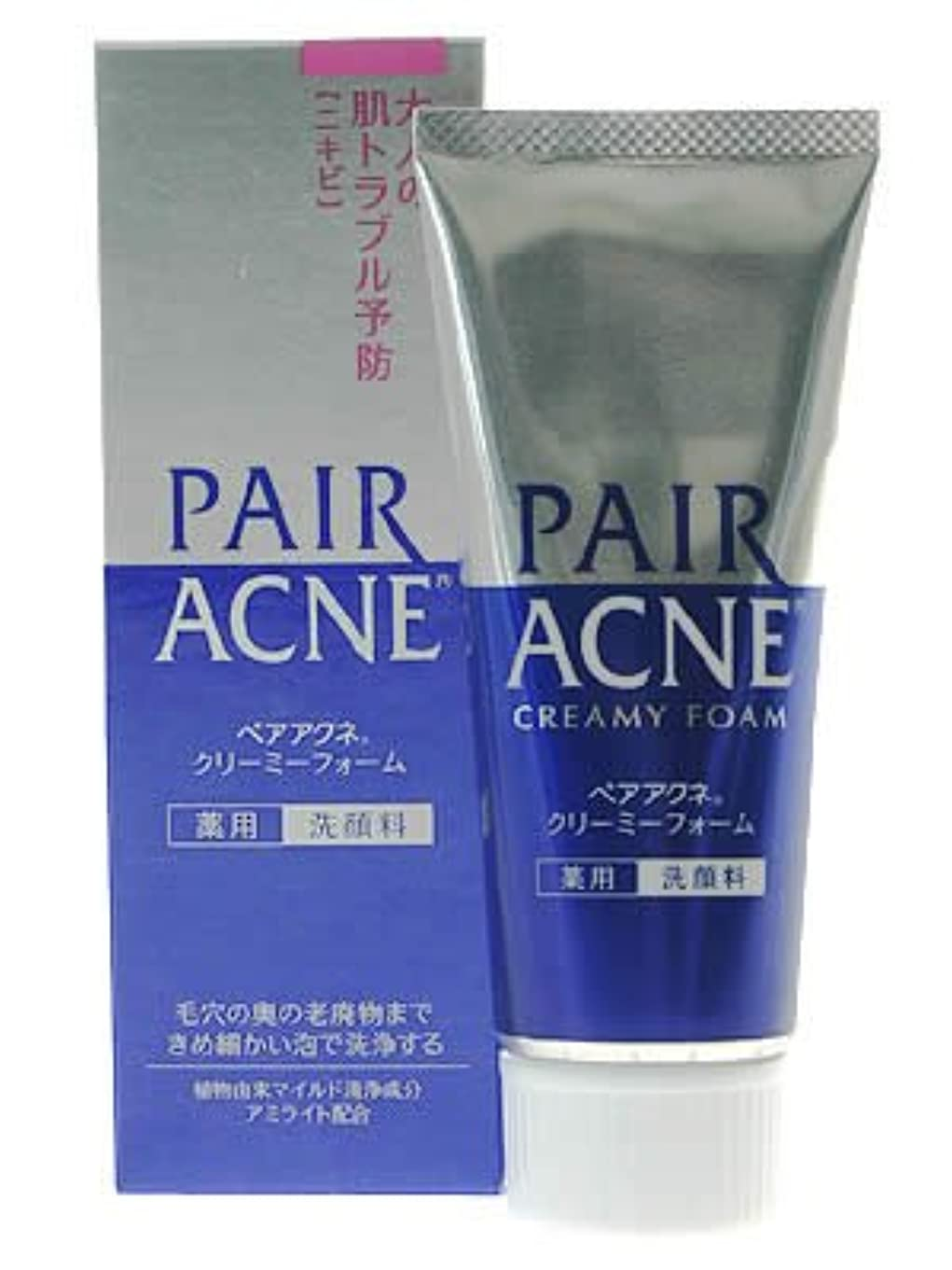 実験的マスク高度ペアアクネ クリーミーフォーム 薬用洗顔料 80g(医薬部外品)