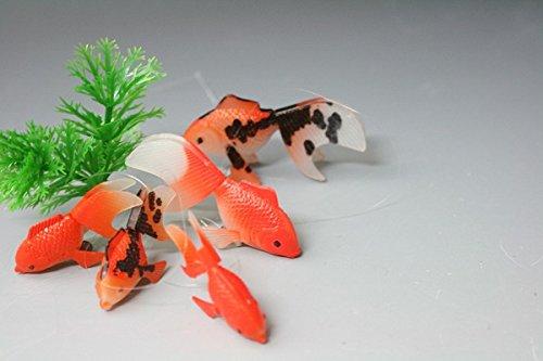 金魚お買い得市 エサのいらない金魚3匹セット+エサのいらない金魚と水草セットが1080円