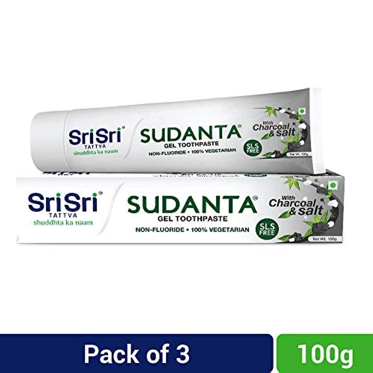 ルーム昇進制約Sri Sri Tattva Sudanta Gel Toothpaste, 300gm (100gm x Pack of 3)