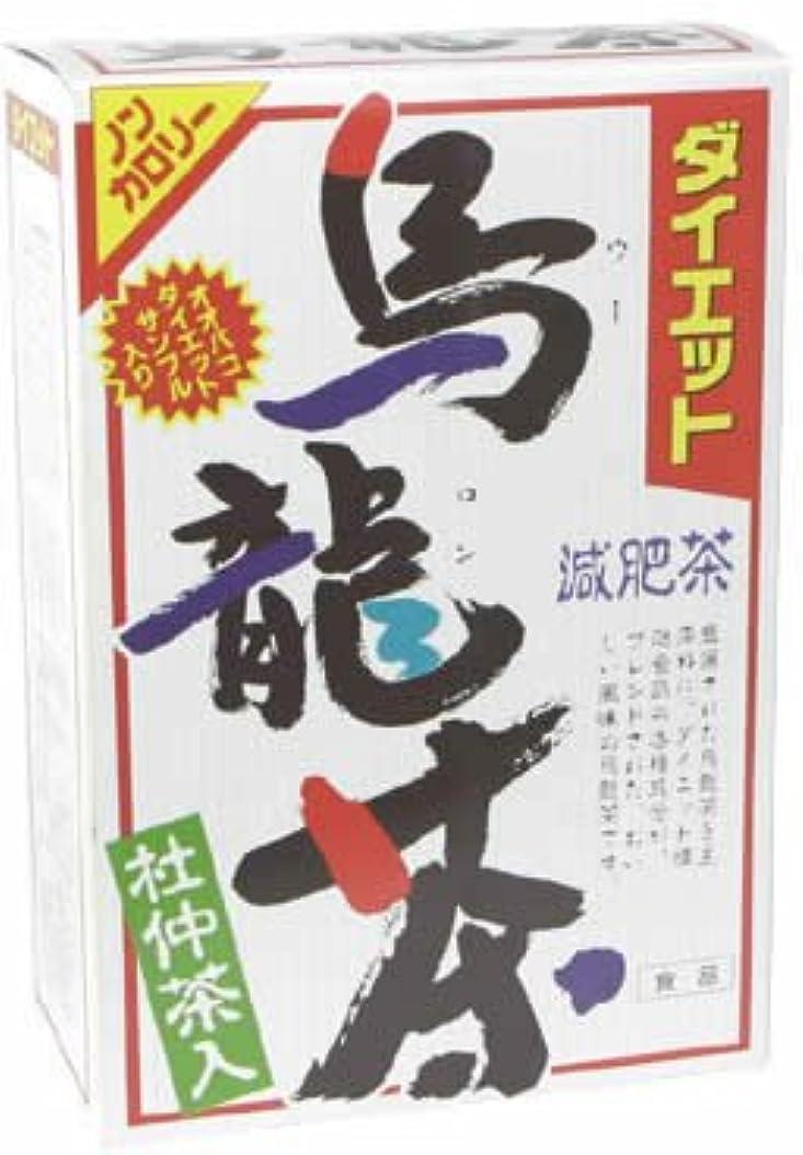 中止しますマラソン暖炉山本漢方製薬 ダイエット烏龍茶980 8gX24H