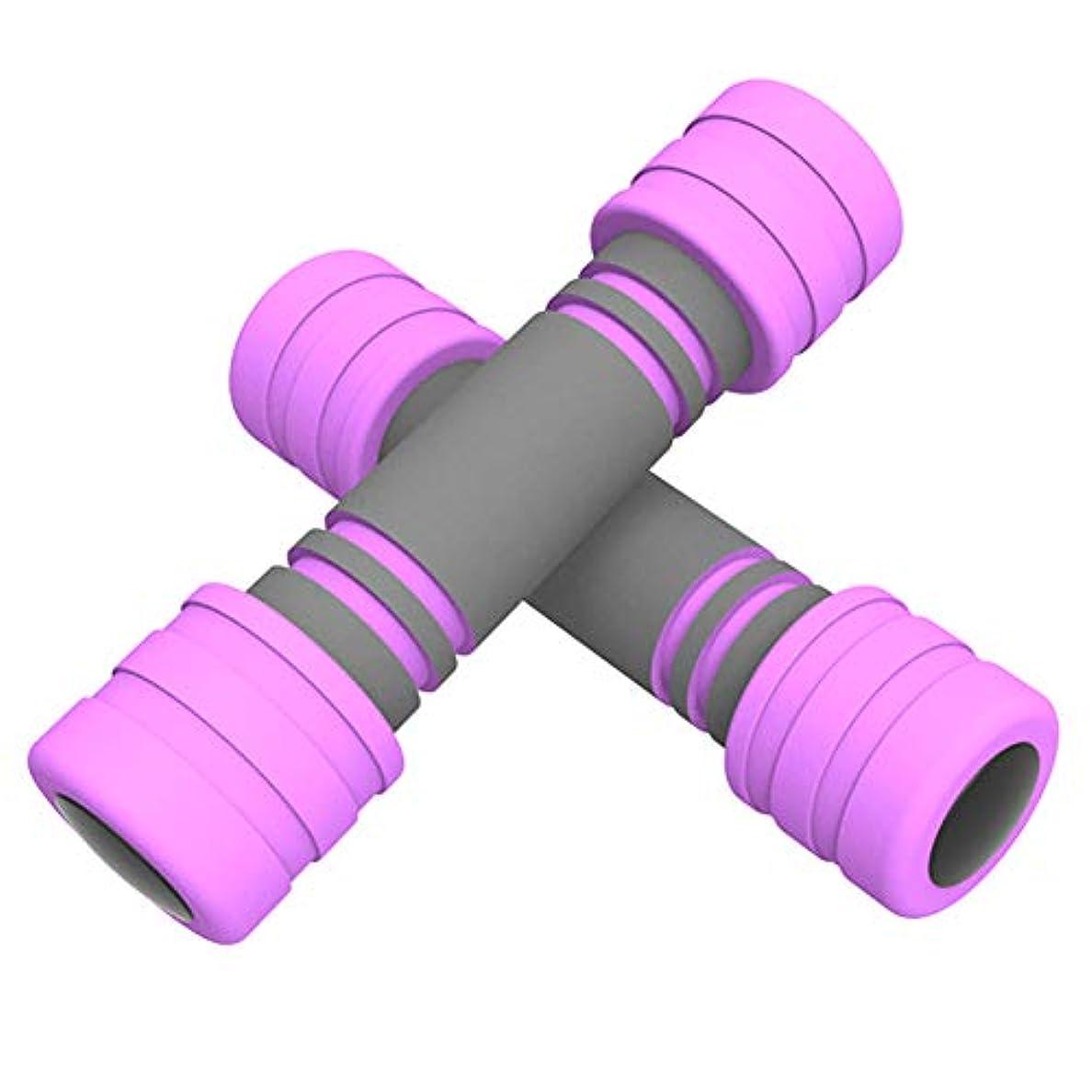 モンク確率マント女性ダンベル2KG / 3KG2個セット筋力トレーニング 嫌気性トレーニングハンドウェイトTnPジム家庭用ヨガピラティスウェイトエクササイズ上腕二頭筋