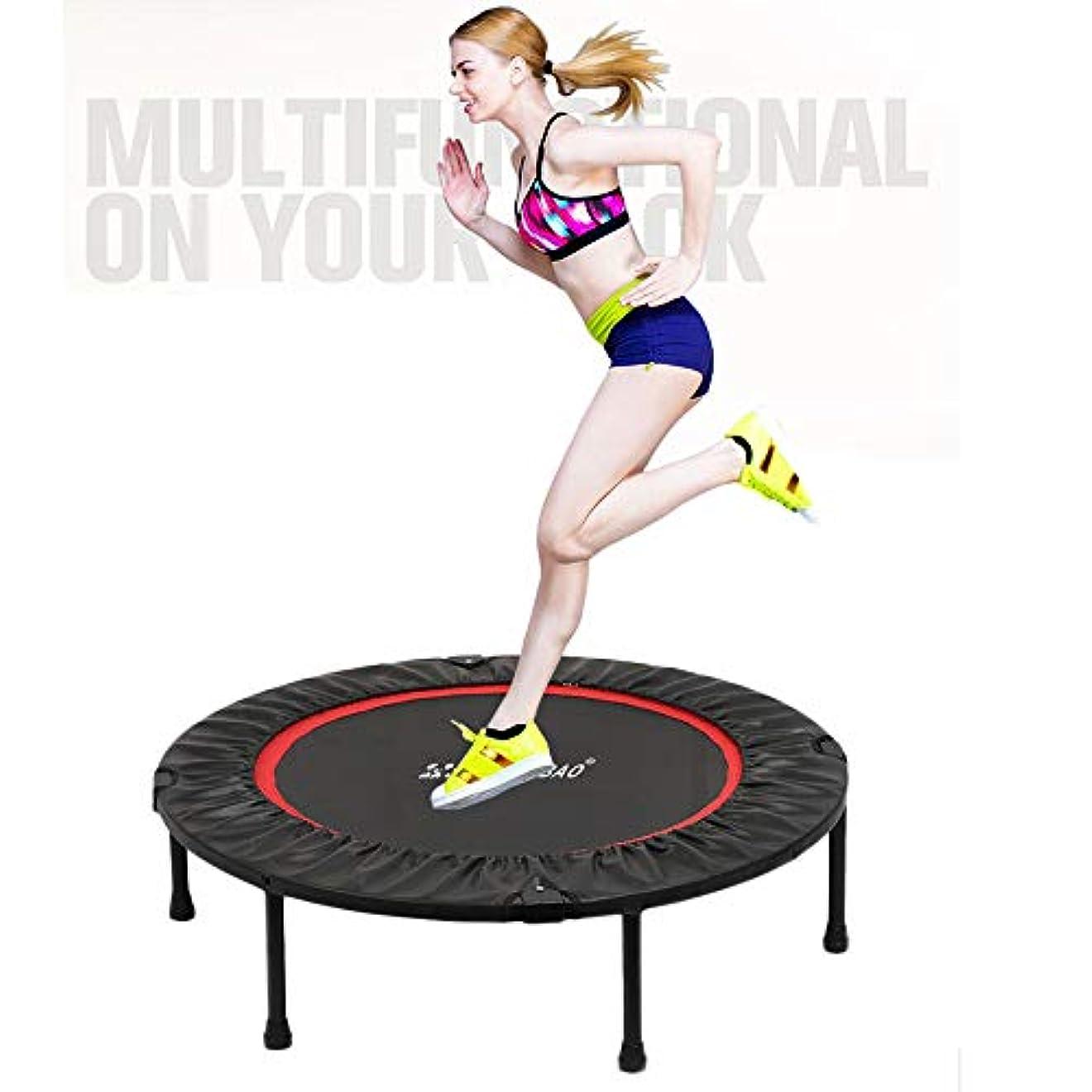 安全性昇進サーバトランポリンミニ大人、屋内体操、ハンドル付きトランポリン220ポンド(48インチ) のジムフィットネス/減量