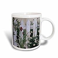 3droseハーAmy Heath花–Gardens–風化ホワイトPicketガーデンフェンスwith Irises and Daisies–マグカップ 11 oz ホワイト mug_44359_1