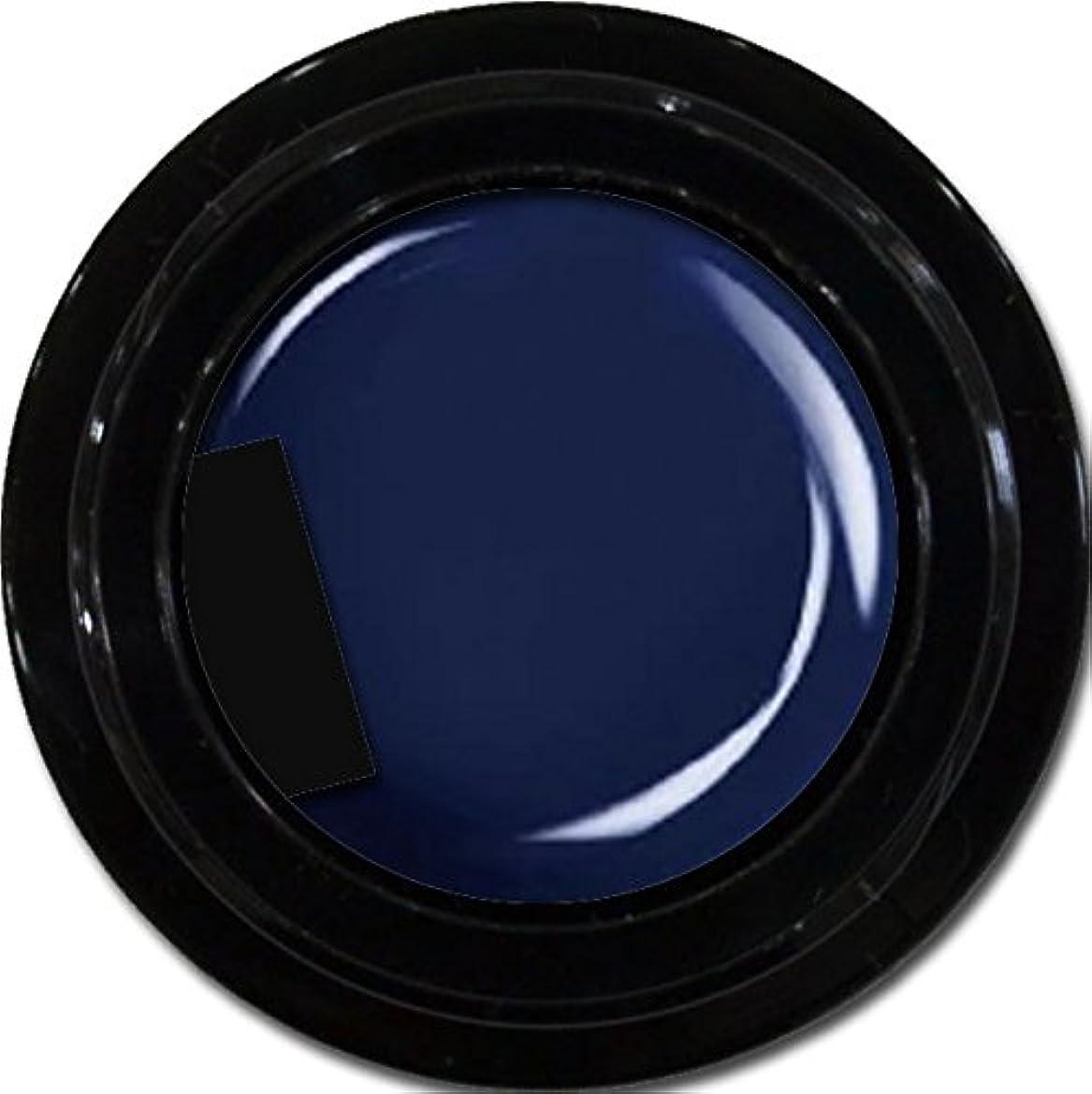 の中でシルエットミルカラージェル enchant color gel M709 Indigo Navy 3g/ マットカラージェル M709 インディゴネイビー 3グラム