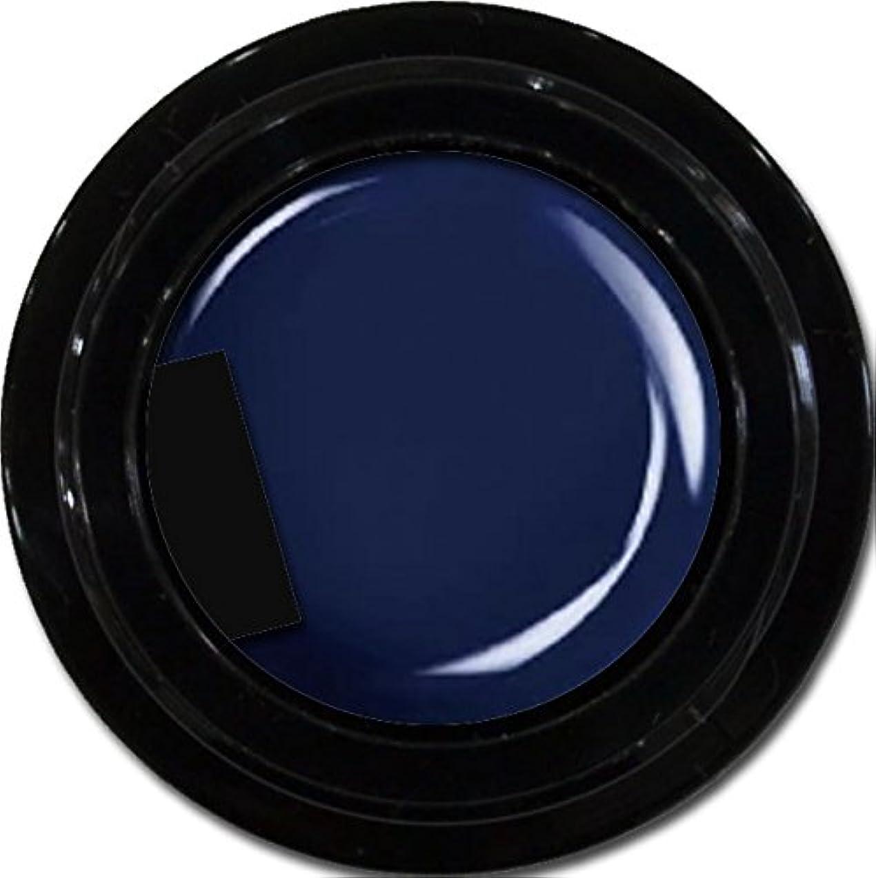 ガラス暖かさ予感カラージェル enchant color gel M709 Indigo Navy 3g/ マットカラージェル M709 インディゴネイビー 3グラム