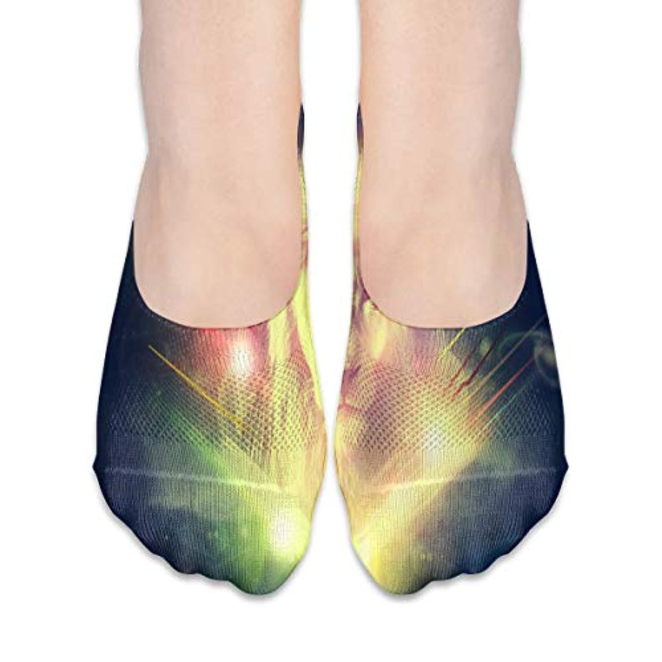 夢イタリアのペレグリネーション女性のためのギャラクシーライオン(2)No Show Socks、ローファーソックスボートシューズソックス