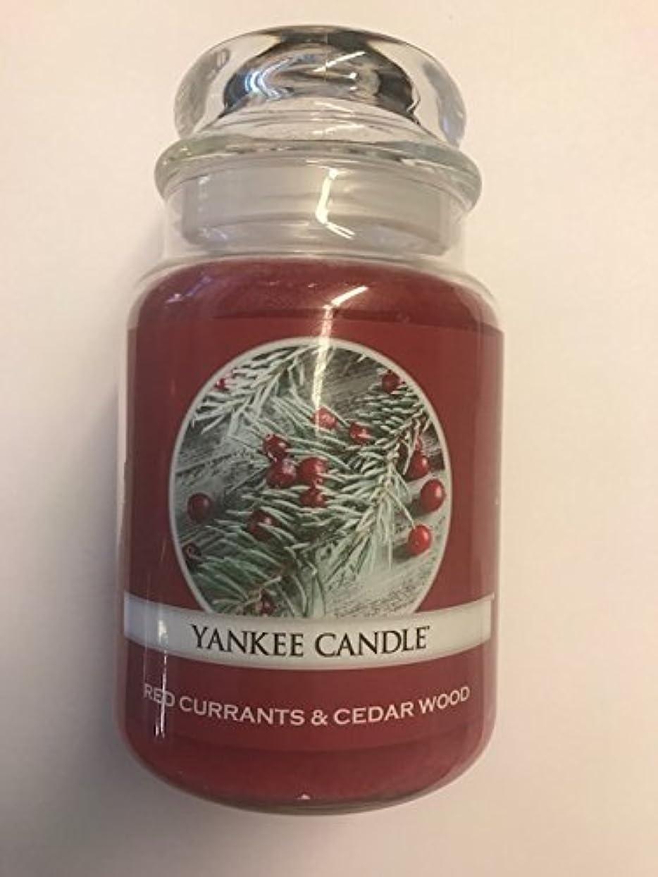 影響フランクワースリー渦Red Currants & Cedar Wood Yankee Candle / 22 0z