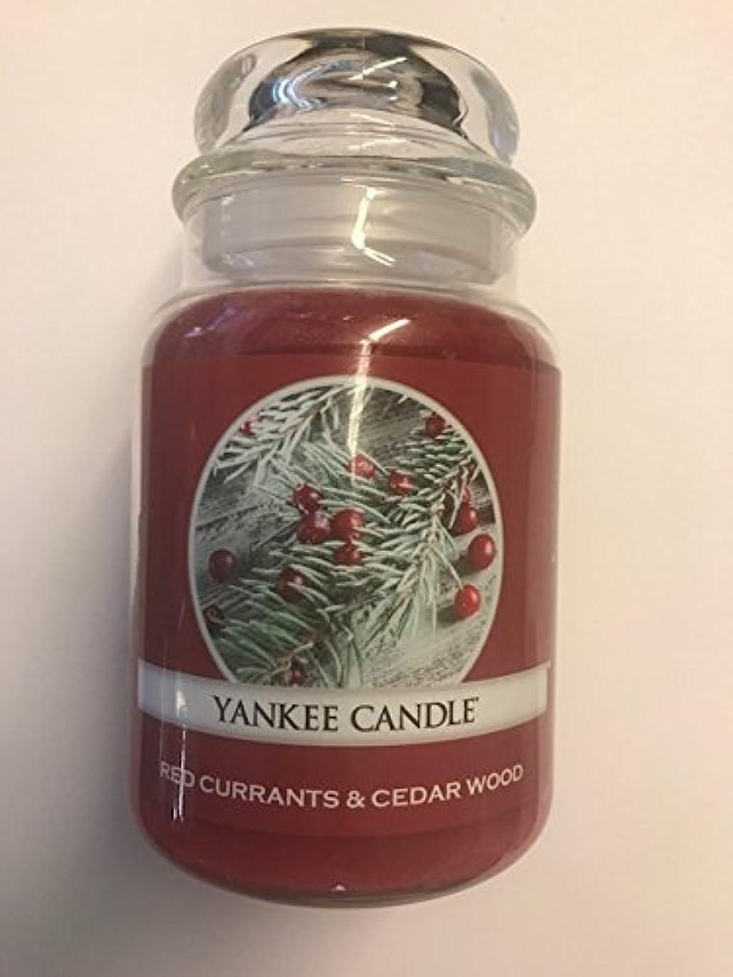 絶縁する後者シガレットRed Currants & Cedar Wood Yankee Candle / 22 0z