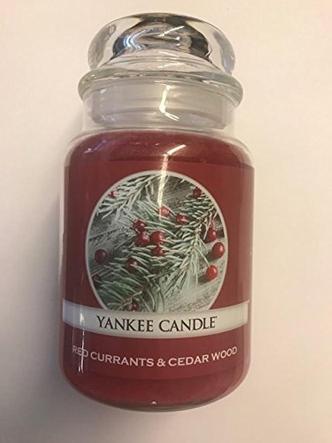 住む勃起ホストRed Currants & Cedar Wood Yankee Candle / 22 0z