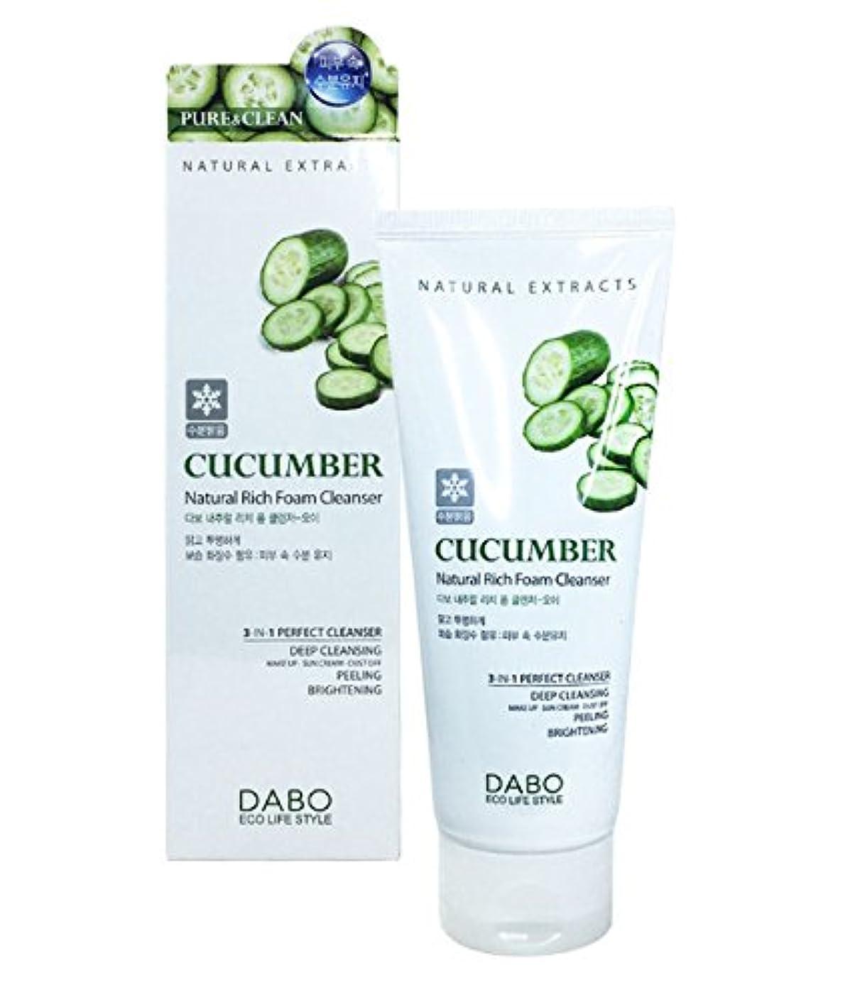 煙突居住者場合Cucumber Natural Rich Foam Cleanser …