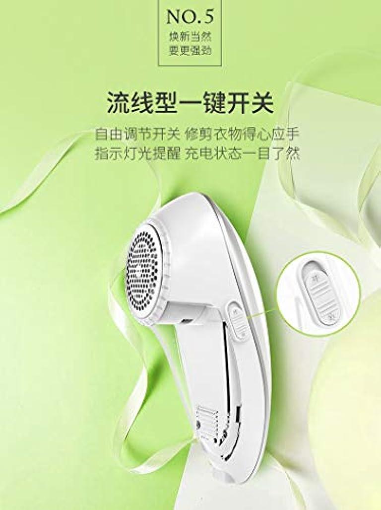 すぐに業界パークEmstany 毛玉取り器 毛玉クリーナー 高速回転 軽量 衣類に優しい usb充電&乾電池両用式 グレー
