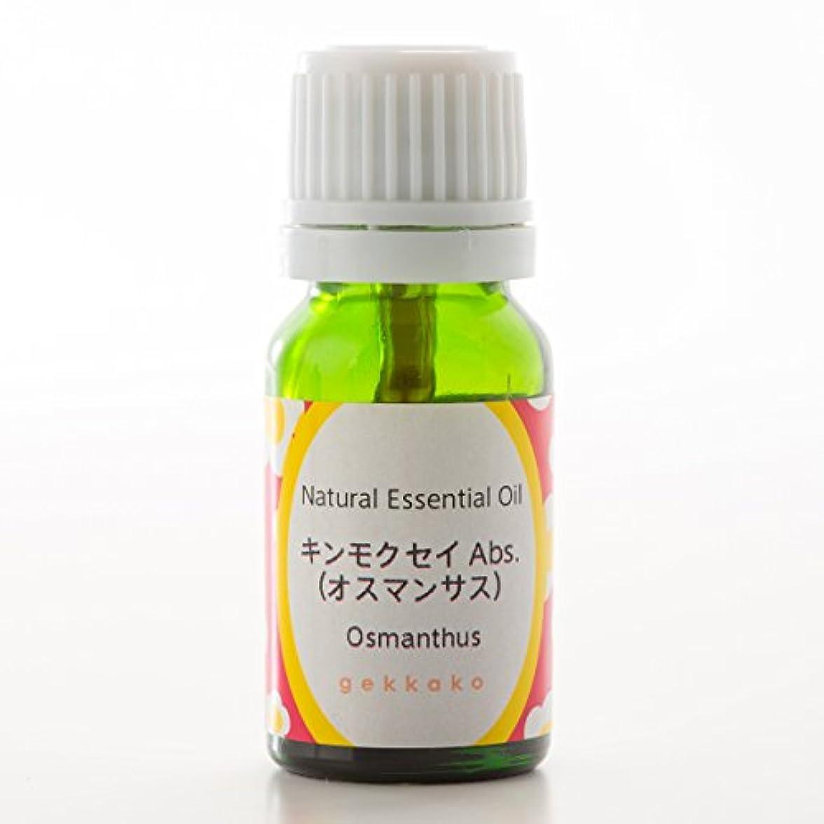 鎮痛剤クリームフィルタ<月下香>エッセンシャルオイル/アロマ/キンモクセイ【3ml】 (3ml)