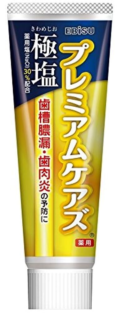 勃起不安定与えるエビス 歯磨き粉 極塩 プレミアムケアズ 100g