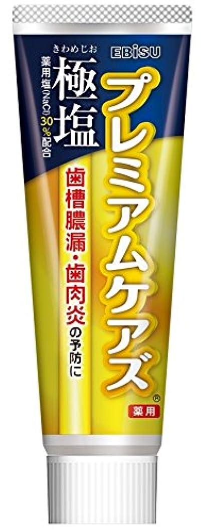 エビス 歯磨き粉 極塩 プレミアムケアズ 100g