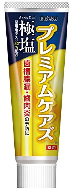 パンフレットペチコート低いエビス 歯磨き粉 極塩 プレミアムケアズ 100g
