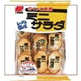三幸製菓 28枚 ミニサラダ しお味 ×12個【1k】