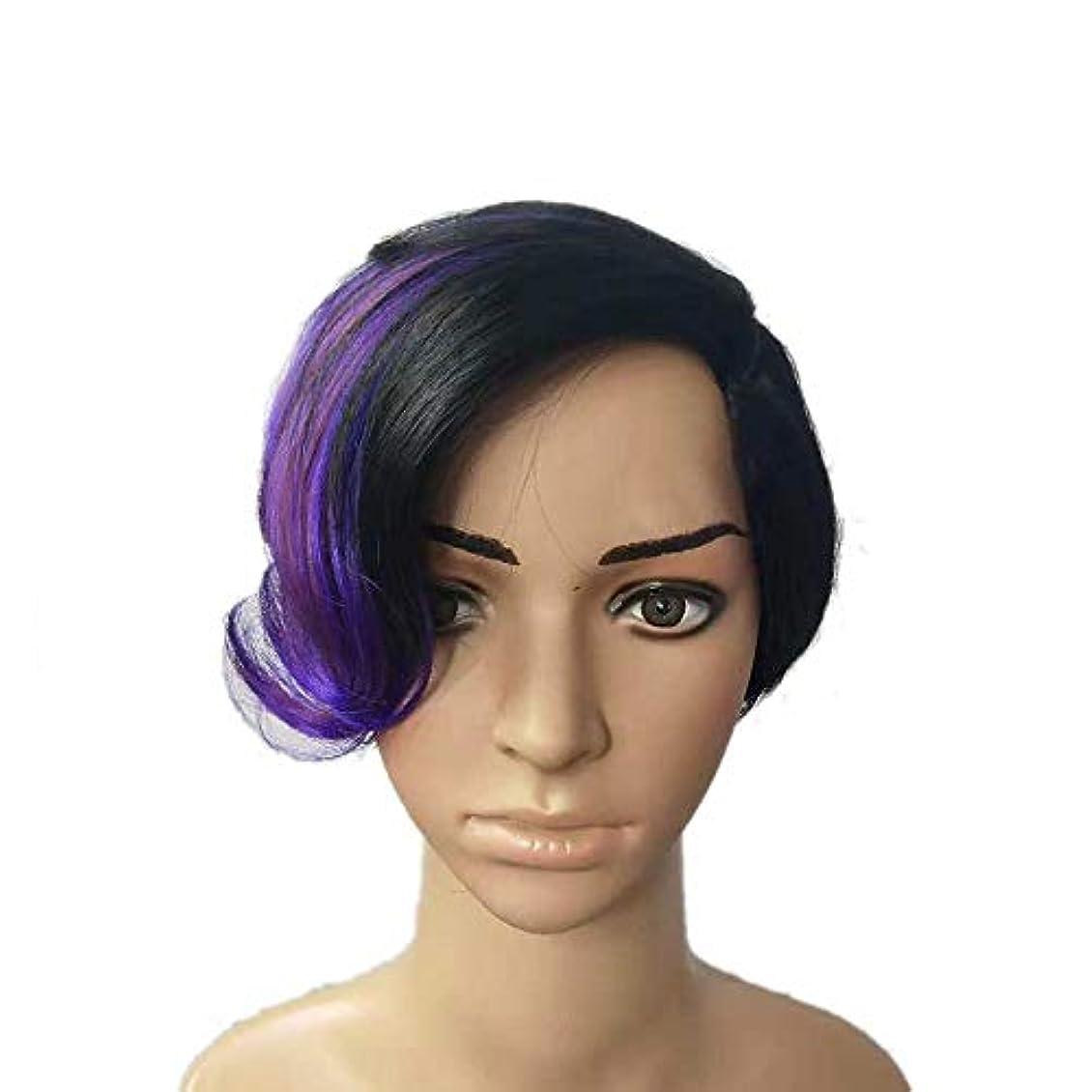 有効な監督する一元化するYOUQIU 女性の黒のハイライトパープルショートカーリーヘアウィッグコスプレパーティードレスウィッグ (色 : Photo Color)