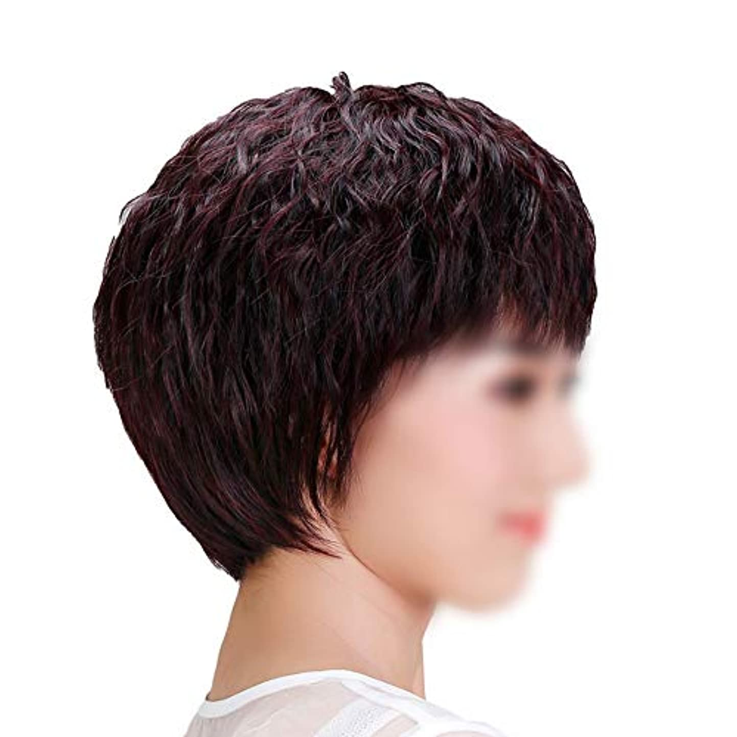 おばあさん楽観統計YOUQIU 手織り女子ショートストレートヘアー中年ウィッグ母のギフトウィッグのための自然な人間の髪 (色 : Dark brown, サイズ : Mechanism)