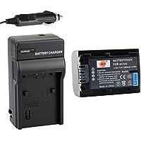 DSTE® アクセサリーキット NP-FV50 NP-FV30 NP-FV40 互換 カメラ バッテリー 1個+充電キット対応機種 HDR-CX220 CX330 CX580V PV790V FDR-AX100