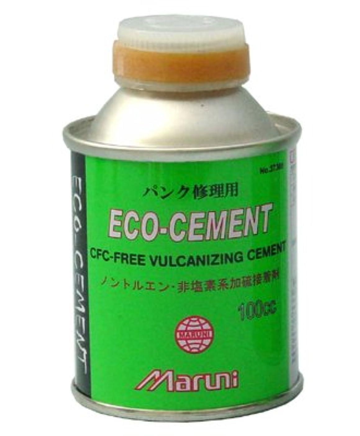 サイト配送両方マルニ エコセメント 100cc