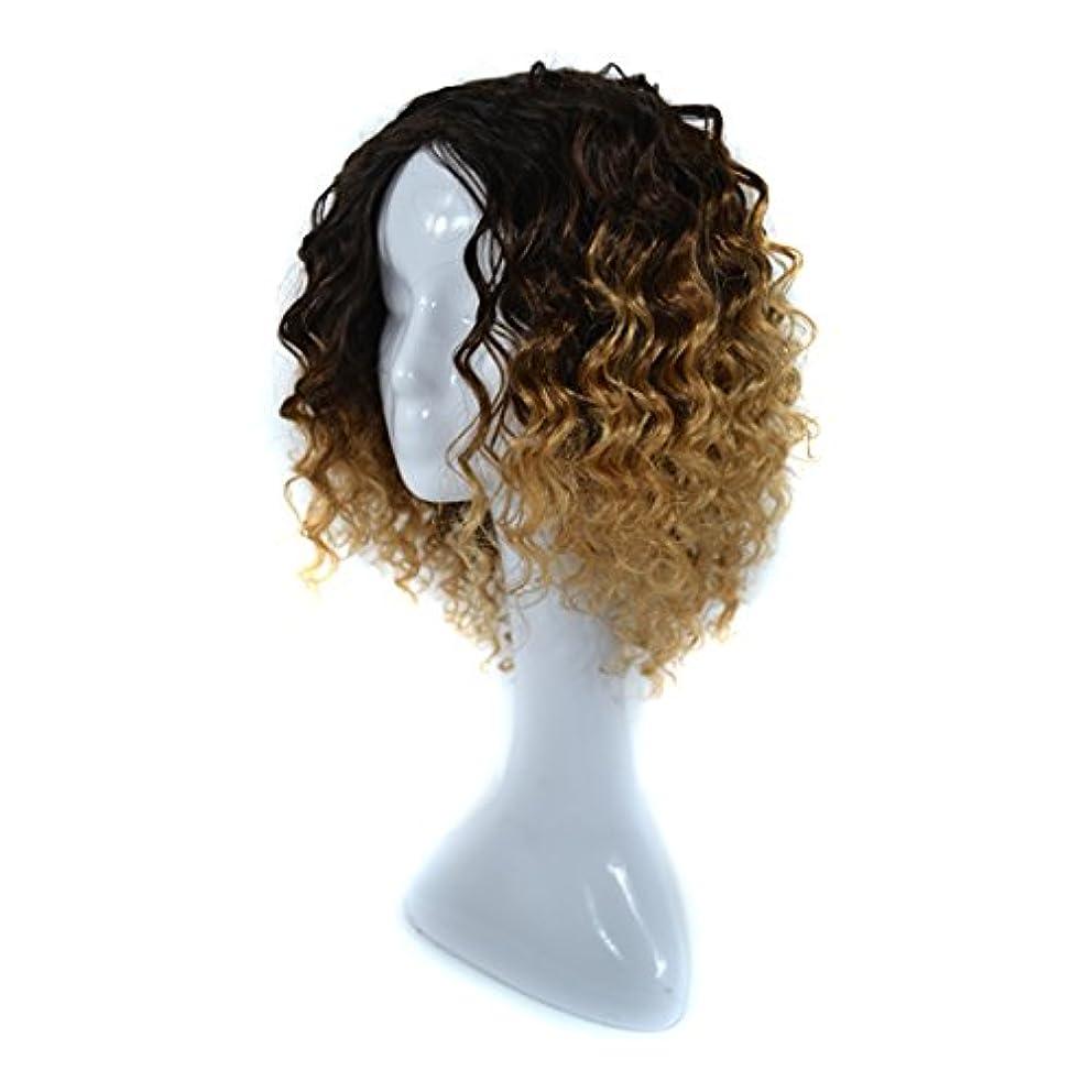 ビールゴミ箱割り当てますJIANFU 300グラムリアルフルウィッグ女性のためのヨーロピアンとアメリカンブラックDEEPスモールボリュームカーリーウィッグリアルな自然な人間の髪のために中傷と合成のデイリーウィッグ (Color : Black...