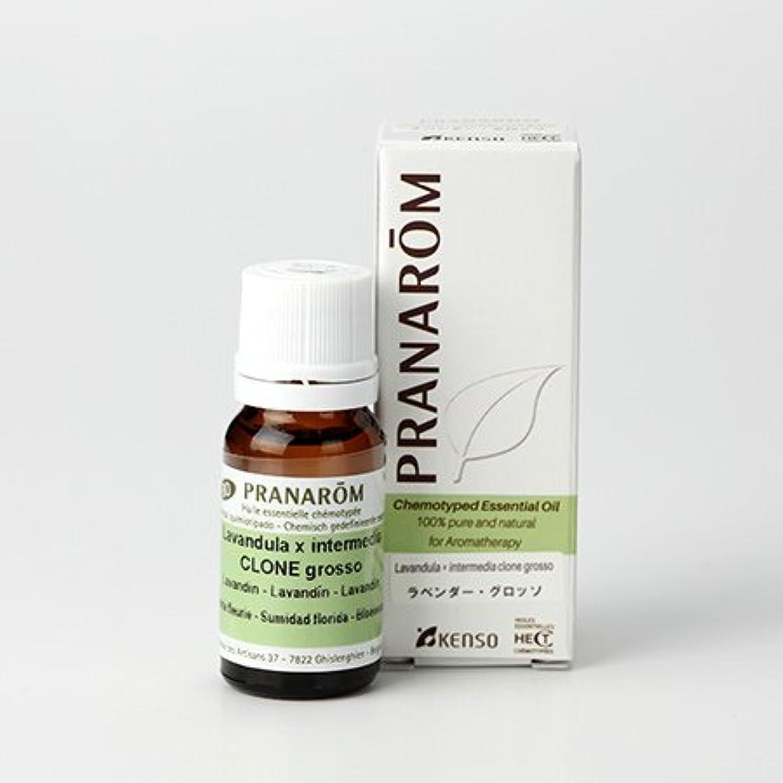 であること光の無視できるプラナロム ラベンダー グロッソ 10ml (PRANAROM ケモタイプ精油)