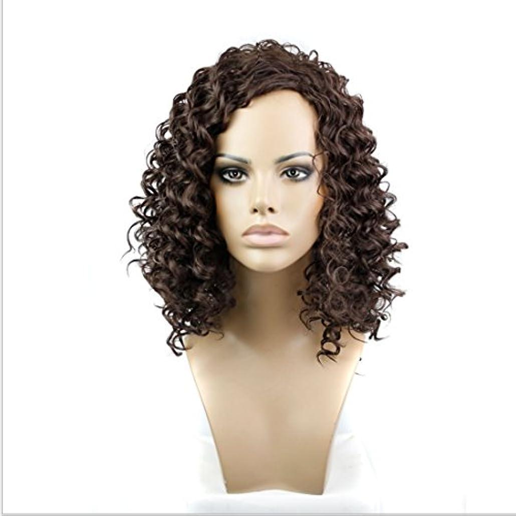 練習抵当乱暴なJIANFU 女性のための合成カーリーヘアウィッグショートスモールヘアブラウンブラック耐熱高温15inch / 180g (色 : Brownish black)