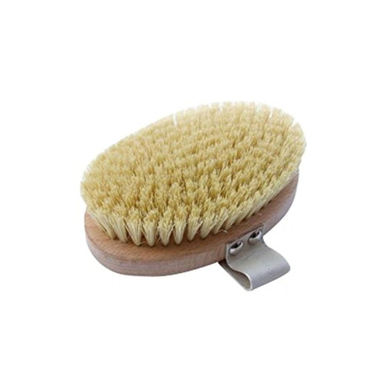抜け目のない責任急流Hydrea London Beech Wood Body Brush With Cactus Fibre Bristles - サボテンの繊維毛とハイドレアロンドンブナの木のボディブラシ [並行輸入品]