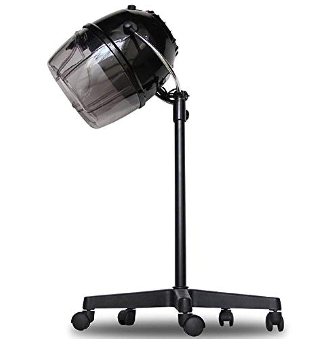 目的鋭く夜HIZLJJ プロフェッショナルサロンスパヘアスチーマースタンドアップフード付きヘアカラーリングパーマコンディショニングスチーマーローリングフロア、0-60分時間設定