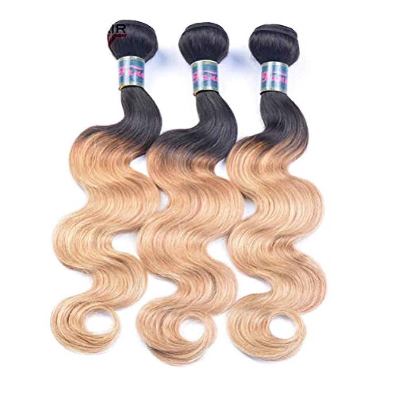 墓ヘビー旋回ブラジルの髪織り髪バンドル実体波1バンドル髪バンドル実体波人間の髪の毛のグラデーション
