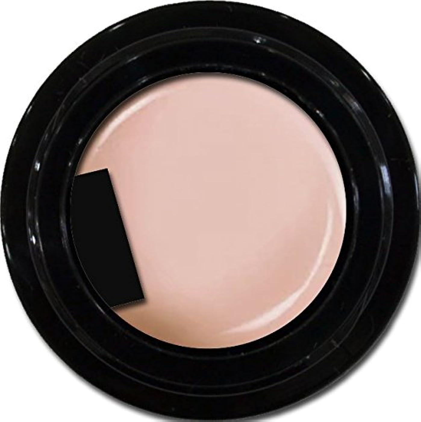 忌避剤報いる所属カラージェル enchant color gel M204 MilkyPink 3g/ マットカラージェル M204 ミルキーピンク 3グラム