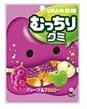 UHA 味覚糖 むっちりグミ グレープ&ブラムリー 92g×6袋