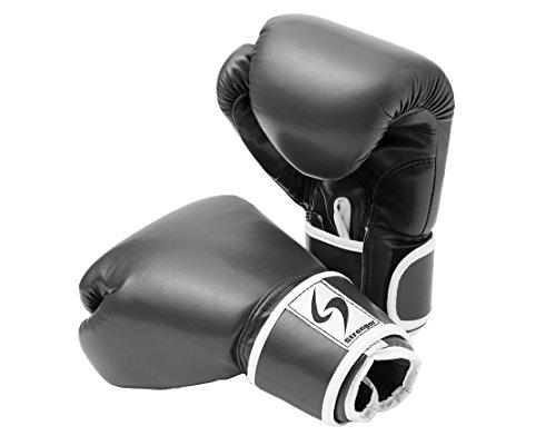 PURE RISE(ピュアライズ) ボクシンググローブ 12オンス 左右セット (ブラック)