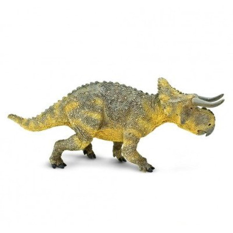 Safari(サファリ) ナストケラトプス おもちゃ One size【並行輸入】