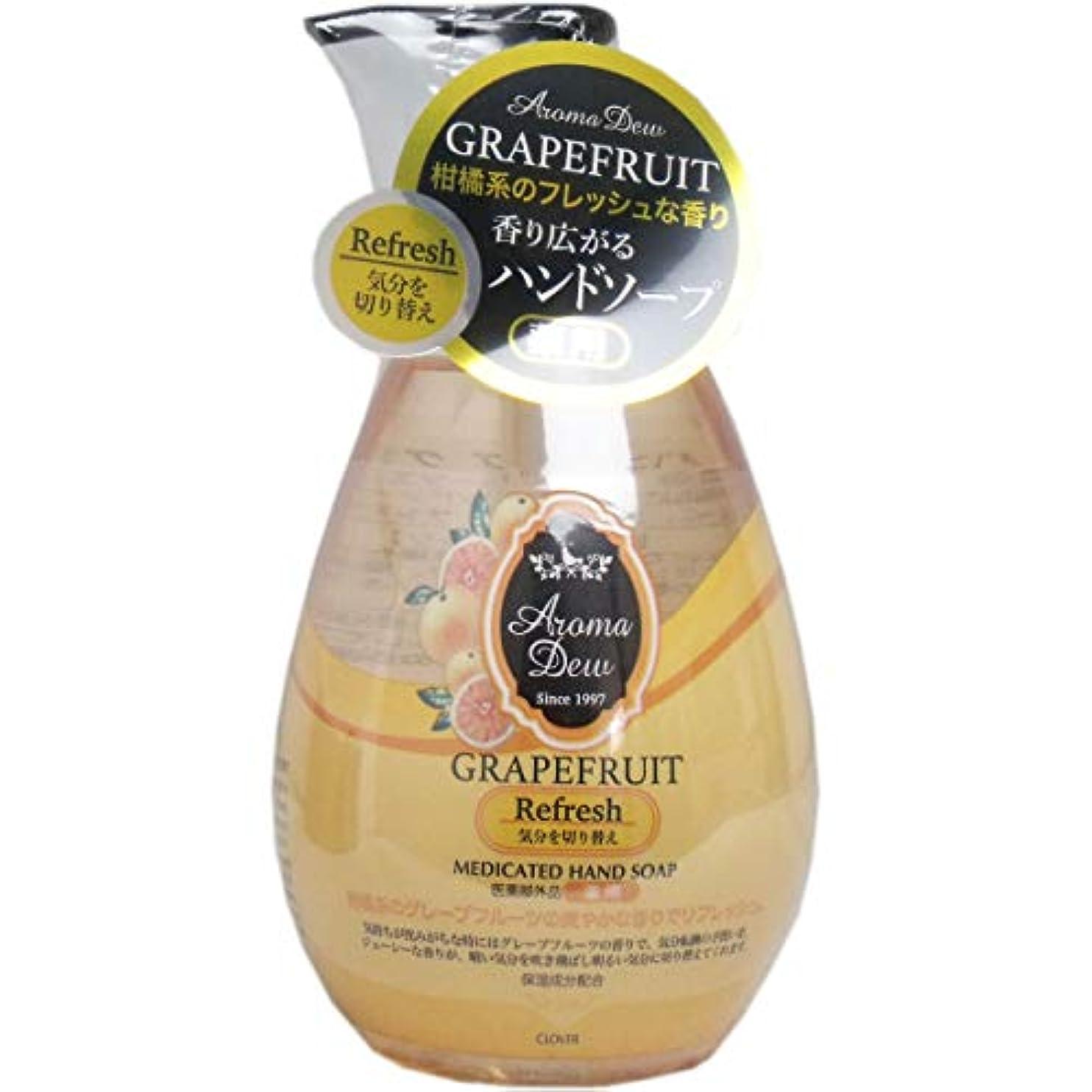 日焼け後方にリングレット薬用アロマデュウ ハンドソープ グレープフルーツの香り 260mL×2個セット