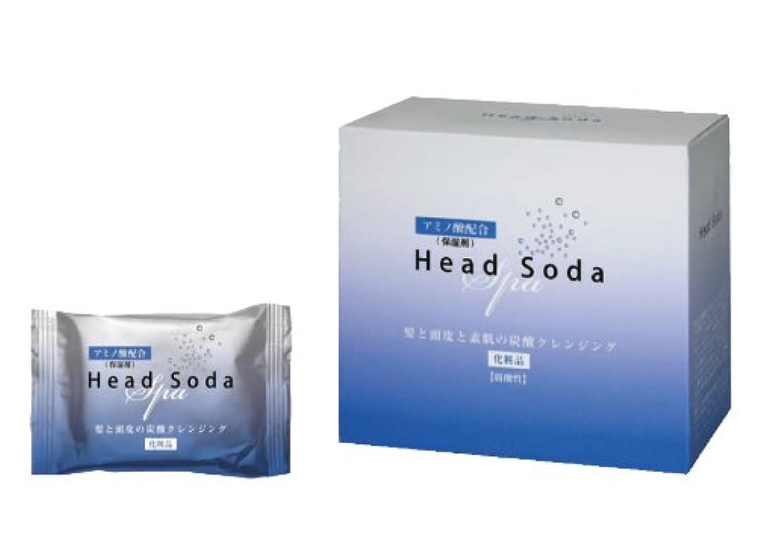 なに媒染剤センブランスビューティーReセット HeadSoda 30g×20錠入