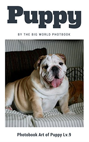 Puppy by The Big World Photobook : Photo book dog, Dog photography,The Dog,My Dog,Cats,Dog,Cat Dog,Black Cat,White Kitten,Cat Memes,Black Kitten,Kittens,Kitten ... (Photobook Art of Puppy 9) (English Edition)