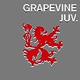 冥王星 / GRAPEVINE