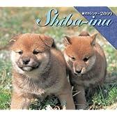 柴犬ミニカレンダー 2009 ([カレンダー])