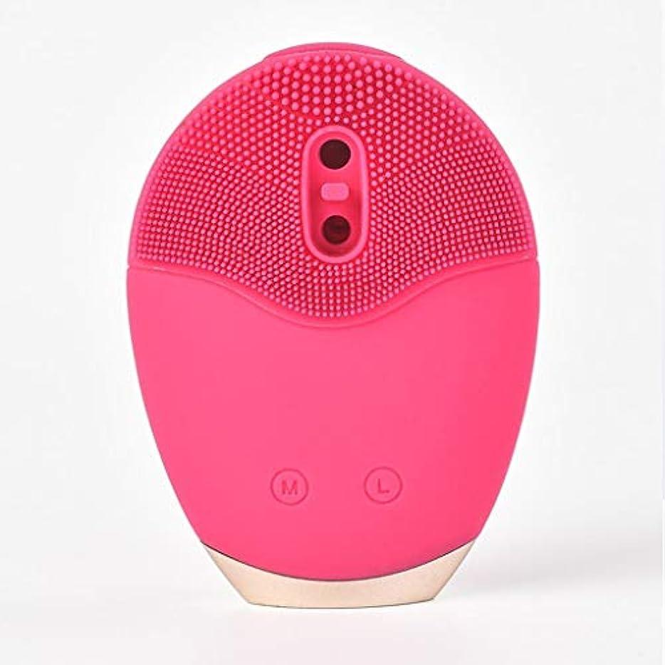取り替える増強する部門音波振動洗顔ブラシ、シリコーン洗顔ブラシ電動アンチエイジングディープクレンジング優しい角質除去ポアクリーナー美容ツール (Color : Red)